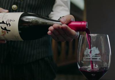 美好生活喝的红酒是什么牌子